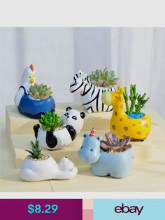 We can't bring wild animals into our home but we have an adorable replacement for you, our Wild Animal Planters! They're perfect for your small succulents and cacti 🌵. drawing for kids Safari Animal Planters Planting Succulents, Planting Flowers, Small Succulents, Succulents Garden, Bonsai Plante, Wild Animals Drawing, Animal Activities For Kids, Wild Animals Photography, Wild Animals Pictures