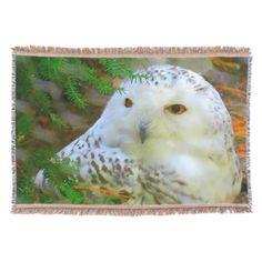 Gorgeous Snowy Owl Throw Blanket