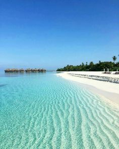 Coco Palm Dhuni Kolhu #Maldives Photo @nasruali #island #cocopalmdhunikolhu #wanderlust #amazing #resort #tropical #paradise #travel #honeymoon #destination #asia #bluesky #bluelagoon #sun #sand #sea nature #photooftheday #photography #beach #Instagram #instadaily #instacute #awesome #stunning #lovely #romantic #breathtaking
