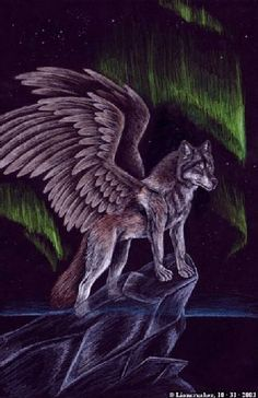A wolf with dragon wings flying. Fantasy Wolf, Fantasy Dragon, Anime Wolf, Fantasy Creatures, Mythical Creatures, Fantasy Kunst, Fantasy Art, Wolf Spirit Animal, Wolf Pictures