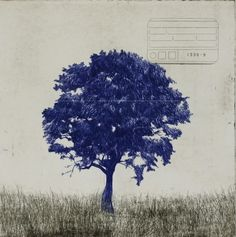 indigoblueandlimetrees:  Marcelo Moscheta...blue tree