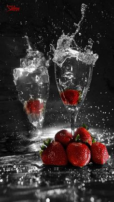 champagne and strawberries on Valentine's Day Splash Photography, Food Photography, Happy Birthday Wishes, Cabernet Sauvignon, Be My Valentine, Color Splash, Happy New Year, Wines, Berries