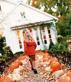 Pumpkin-Lined Trail - A walkway lined with an eclectic assortment of pumpkins sets the tone for the Halloween decor and treats that await inside.