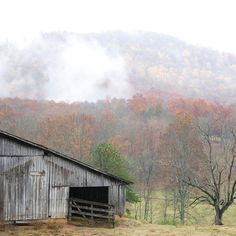 """Apple Capitol of Georgia - We Found the South's Best Fall Color - Southernliving. About 80 miles north of Atlanta, the small town of Ellijay sits on the edge of the Chattahoochee National Forest. Renowned as the """"Apple Capitol of Georgia,"""" Ellijay and surrounding Gilmer County are home to 10 pick-your-own apple orchards and the annual Georgia Apple Festival.gilmerchamber.com"""