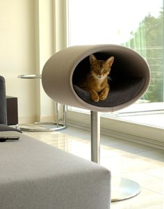 Stylish Rondo Stand For Your Cool Cat To Rest