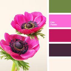 burgundy and purple