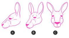 How to Draw Animals: Kangaroos and Koalas