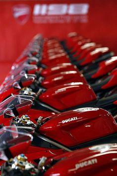 acdntlpoet: combustible-contraptions: Ducati Line