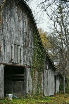 Kentucky Barn: i am sure some great stories are tucked away in this beautifully aged wooden barn!