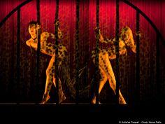 Photos des danseuses du cabaret le Crazy Horse.