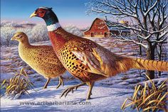 Wildlife art prints plus original paintings with a wide selection from ArtBarbarians.com located in Minnesota. Frosty Morning Ringnecks By Kim Norlien