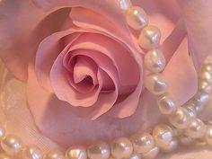 Pearls & pink roses