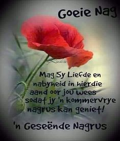 Evening Greetings, Afrikaanse Quotes, Good Night Blessings, Goeie Nag, Good Night Quotes, Special Quotes, Sleep Tight, Trust God, Birthday Wishes