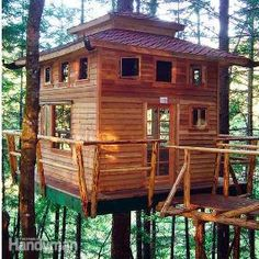 Tree houses are for everyone with imagination. Elevate your building skills with these tree house building tips from experienced builders, including attachment techniques, site choice, assembly techniques, design ideas and more.