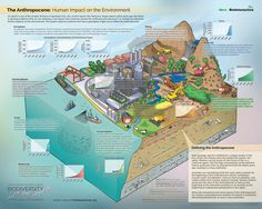 The Anthropocene: Human Impact on the Environment