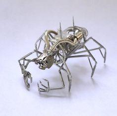 insecte 11