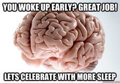 you woke up early great job lets celebrate with more sleep - Scumbag Brain