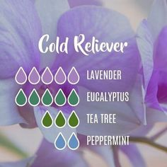 With the weather changing and flu season around the corner, try to use natural options for cold relief! Our Young Living essential oils make it easy to prepare for cold season! This cold relief diffuser blend is perfect for daytime and nighttime relief! Essential Oils For Colds, Essential Oils Guide, Essential Oil Diffuser Blends, Essential Oil Uses, Oils For Diffuser, Young Living Essential Oils Recipes Cold, Essential Oil Cold Remedy, Oil For Cough, Essential Oil Combinations