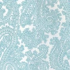 Posh paisley in robins egg blue