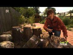Querbeet - Pilzanbau im eigenen Garten 29.09.2014 BR - YouTube
