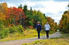 5 Great Reasons to Go to Nova Scotia This Fall.