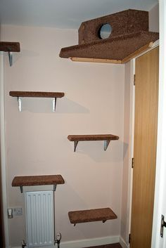 ♥ DIY Cat Stuff ♥ Tons of DIY inspo for cat climbing fun! Maybe this would keep them off the entertainment center and counter. Cat Playground Ideas