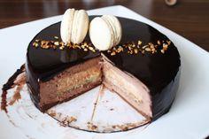 entremets-chocolat-vanille-praliné9