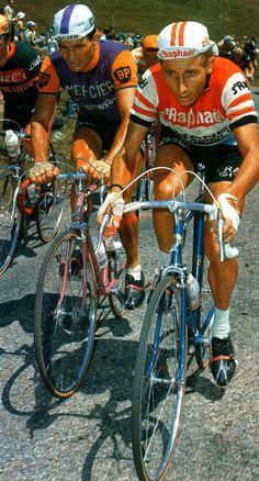 Jacques Anquetil Raymond Poulidor MIROIR du CYCLISME
