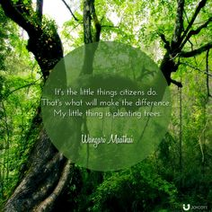 What is your little thing that will make the world a better place? #quote