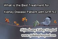 What is the best treatment for kidney disease patient with GFR 52 ? When it comes to the best treatment, it should be able to improve the GFR level and give the patient a chance to live like a normal person. To be frankly, there is no single Western Medicine nor Chinese Medicine can treat kidney disease well. So the best treatment should be a perfect combination of them.
