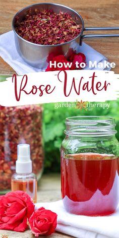 Homemade Rose Water, Homemade Beauty, Diy Beauty, Homemade Tea, Beauty Skin, Beauty Tips, Making Rose Water, Natural Face Toner, Natural Skin