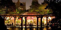 Central Park Zoo Wedding-- New York, NY
