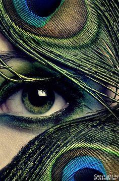 "peacock ""eye"""