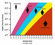Calculate your Body Mass Index(BMI). A person's weight & height is the parameter to calculate it. Get BMI chart based on the WHO & Asian criteria. Bmi Chart For Women, Weight Chart For Men, Weight Charts, Weight Loss Chart, Weight Loss Blogs, Weight Machine Workout, Workout Machines, Marcy Home Gym, At Home Gym