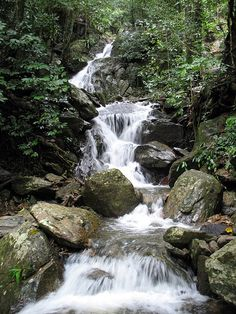 Crystal Cascades in Cairns. Paradise.
