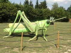#magiaswiat #zator #podróż #zwiedzanie #europa  #blog #figury #park #rozrywki #miniatury #owady #dinozaury #budowle #budowle #budynki Park, Blog, Europe, Parks, Blogging