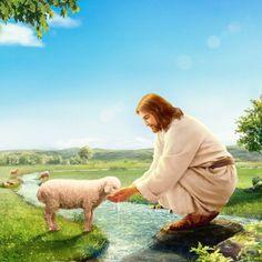71. En cuanto a Dios aparecerse en la carne, ¿por qué no lo hace como una imagen importante o imponente? #IglesiadeDiosTodopoderoso #Evangelio #Cristo #Revelación #Juicio #Cordero #MisteriosDelaBiblia #NombreDeDios #ElHijoDeDios #ElhijodelHombre  #LosÚltimosDías #LaVidaEterna #ElReinoDeDios #ElRegresoDeJesús #ElRetornoDeJesús #ElDíaDelJuicio Jesus Christ Painting, Jesus Art, Lion Of Judah Jesus, Arte Dark Souls, Spiritual Photos, Pictures Of Jesus Christ, Christian Artwork, The Good Shepherd, Soul Art
