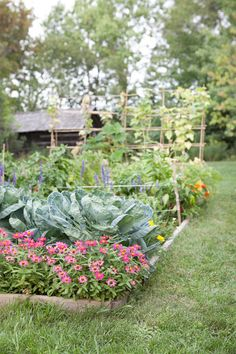 Choosing a new design for your vegetable garden? Create a neat and better one with our vegetable garden design ideas! Potager Garden, Veg Garden, Vegetable Garden Design, Garden Cottage, Edible Garden, Garden Beds, Garden Landscaping, Planting Vegetables, Growing Vegetables