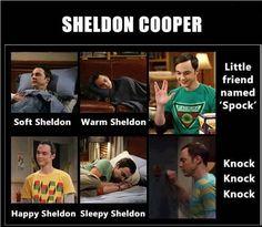 The Big Bang Theory: Sheldon instead of Soft Kitty Funny Memes, Hilarious, Jokes, Himym Memes, Funny Captions, Big Bang Theory Funny, Best Tv Shows, Really Funny, Knock Knock