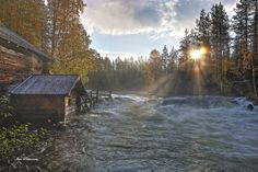Oulanka National Park in August. Finland. Photo Ismo Pekkarinen
