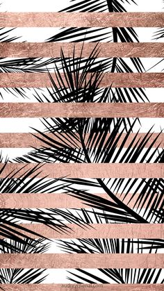 rose gold wallpaper backgrounds - Trendy tropical palm trees chic rose gold stripes' iPhone Case by GirlyTrend Palm Tree Iphone Wallpaper, Rose Gold Wallpaper, Free Iphone Wallpaper, Tumblr Wallpaper, Cool Wallpaper, Wallpaper Backgrounds, Iphone Wallpapers, Glitter Wallpaper, Tropical Wallpaper