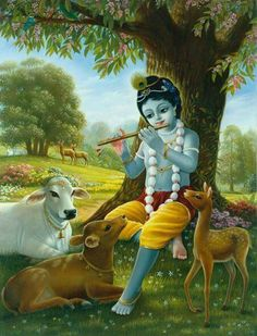 Hare Krishna Batam: When you take a position, you have to accept respo. Señor Krishna, Krishna Avatar, Iskcon Krishna, Krishna Leela, Cute Krishna, Jai Shree Krishna, Radha Krishna Photo, Hanuman, Lord Krishna Wallpapers