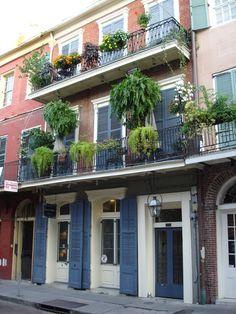New Orleans balcony gardens