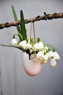 Easter decoration, egg filled with flowers Deco Floral, Arte Floral, Easter Flowers, Spring Flowers, Easter Table, Easter Eggs, Deco Nature, Diy Ostern, Easter Parade
