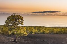 Above clouds by Miguel Pereira on 500px