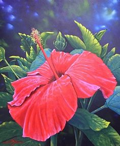 Hibiscus by Curt Ives Oil ~ 24 x 20 Sometimes you don't have to look far to find subjects to paint. This was in my backyard. I love the vivid red of this hibiscus, but painting red can be problematic. Trying to make a dark red or shadow is difficult, but a light red is next to impossible. If you add white to red paint, you get PINK, not light red. So it was a bit of a challenge to show light and dark areas but I was pretty happy with the result.