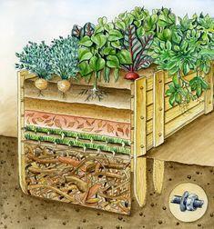 Hochbeet Befullen Diese Schichten Steigern Den Ernte Erfolg Garten Hochbeet Hochbeet Und Garten Anpflanzen
