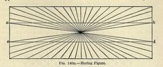 Elements of physiological psychology. When two straight and parallel lines are presented in front of radial background (like the spokes of a bicycle), the lines appear. Philosophy Of Mind, Fig, Geometry, Charts, Maps, Psychology, Bicycle, Diagram, Sketches