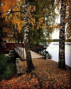 Aulanko Tekosaari Eye For Beauty, Finland, Travelling, Country Roads, Classroom