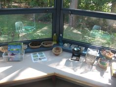 Maybe do a low shelf under the window in their room? // Love that the science area overlooks outside.